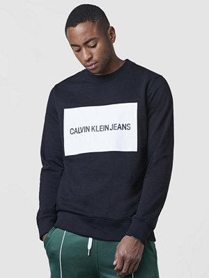 Tröjor & cardigans - Calvin Klein Jeans Institutional Box logo Sweatshirt 099 Black
