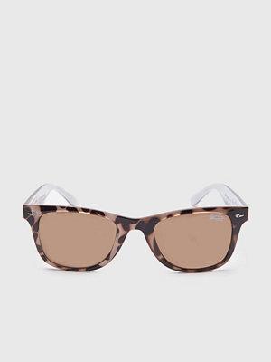Solglasögon - Superdry Rookie Glossy Ponyskin/Brown