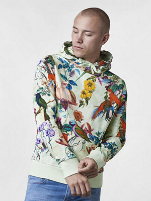 Street & luvtröjor - Ljung by Marcus Larsson Hood Sweater Printed Singing Birds