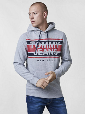 Tommy Jeans TJM Essential Graphic Hoodie Light Grey