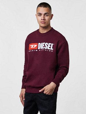 Diesel S - Crew Division 44G Burgundy