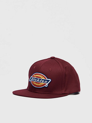 Kepsar - Dickies Muldoon Maroon