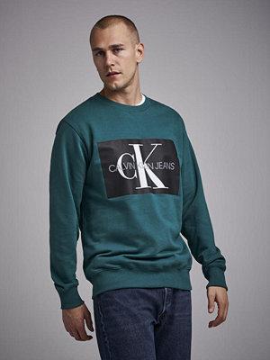 Calvin Klein Jeans Monogram Box Logo Reg 372 June Bugg