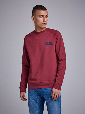Tröjor & cardigans - NN07 Canyon Sweat 3383 512 Washed Red