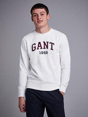 Tröjor & cardigans - Gant Graphic C-Neck Sweat Eggshell