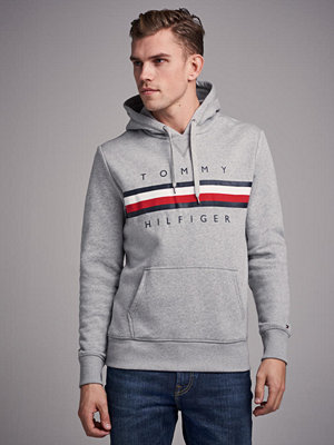 Street & luvtröjor - Tommy Hilfiger Logo Hoody 501 Cloud Heather