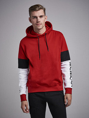 Street & luvtröjor - William Baxter Dalton sweat Hoodie Red