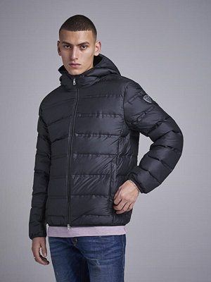 EA7 Emporio Armani Mountain Down Hood Jacket Black