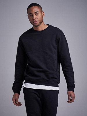Studio Total Andy Crew Sweater Black