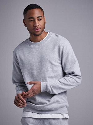 Studio Total Andy Crew Sweater Lt Grey
