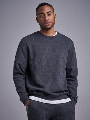 Studio Total Andy Crew Sweater Dk Greymelange