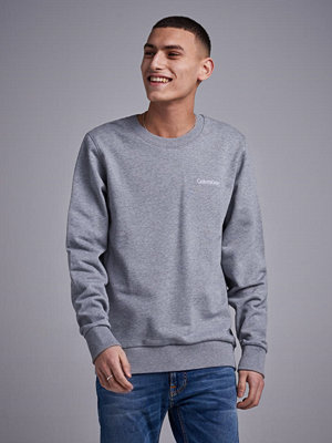 Tröjor & cardigans - Calvin Klein Embroidery Sweatshirt Midgrey Heather
