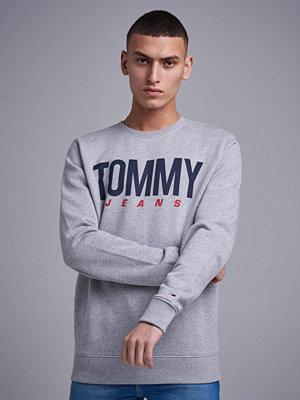 Tröjor & cardigans - Tommy Jeans TJM Essential Logo Crew Light Grey HTR