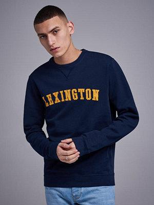 Tröjor & cardigans - Lexington Lucas Sweatshirt Navy Blue