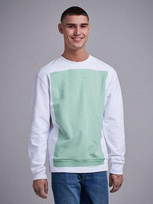 Tröjor & cardigans - Calvin Klein Overprint Oversize Sweatshirt Spring Bouquet