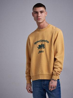 Tröjor & cardigans - Tiger of Sweden Jeans Tana O 790 Mustard