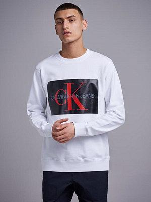 Calvin Klein Jeans Monogram Box Logo Crewneck 901 Bright White / CK Black