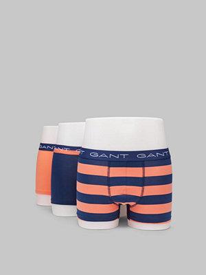 Gant 3-pack Rugby Stripe 859 Coral orange