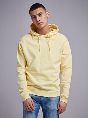 Street & luvtröjor - Studio Total Frank Hoodie yellow
