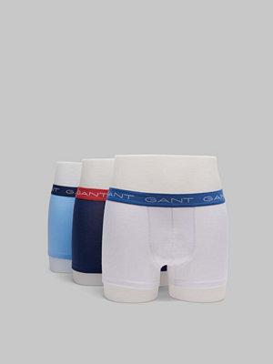 Gant 3-pack Seasonal Trunk 468 Capri blue
