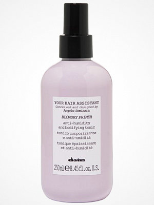 Hårprodukter - Davines Davines Your Hair Assistant Blowdry Primer 250 Ml