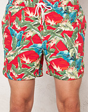 Badkläder - Jack & Jones Romeo Swim Shorts