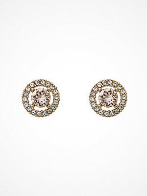 Lily and Rose örhängen Miss Miranda Earrings Light Silk/Gold