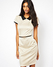 Paper Dolls Pencil Dress in Snake with Contrast Collar