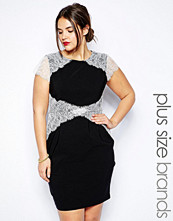 Paper Dolls Plus Short Sleeve Lace Overlay Pencil Dress