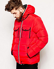 Jackor - Bellfield Padded Jacket With Contrast Trims