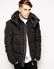 Jackor - Religion Padded Jacket with Detachable Hood