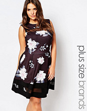 Praslin Plus Skater Dress In Floral Print With Mesh Inserts