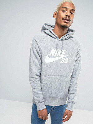 Nike Sb Icon Pullover Hoodie In Grey 846886-063