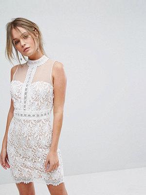 New Look Cutwork Lace Sheer Mesh Dress