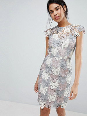 Paper Dolls Premium Multi Lace Pencil Dress