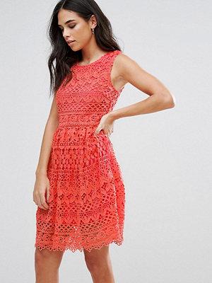 Liquorish Lace Mini Dress