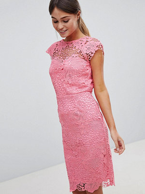 Paper Dolls Lace Dress With Scalloped Back - Coral