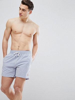 Polo Ralph Lauren Traveller Stretch Seersucker Stripe Swim Shorts Player Logo in Blue/White - Royal seersucker