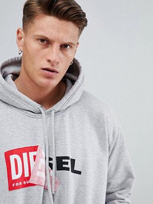 Street & luvtröjor - Diesel S-ALBY Logo Hoodie Grey