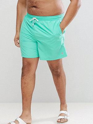 Polo Ralph Lauren Big & Tall Traveller Swim Shorts Player Logo in Light Green - Hawaiian green