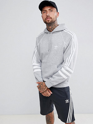Adidas Originals Authentic Hoody In Grey DH3852