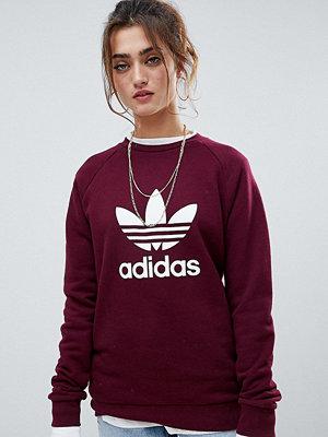 Adidas Originals Rödbrun sweatshirt med rund halsringning och treklöverlogga Rödbrun