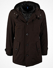 Jackor - ESPRIT Collection Parkas seal brown