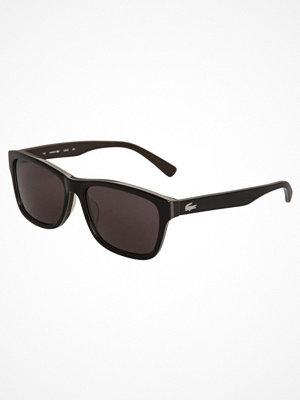 Lacoste Solglasögon black/brown