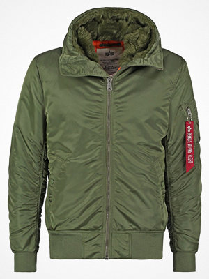 Jackor - Alpha Industries STANDART FIT Vinterjacka sage green