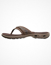 Columbia KAMBI VENT Flipflops dark brown/truffle