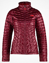 The North Face Vinterjacka deep garnet red