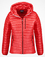 Patagonia Dunjacka french red
