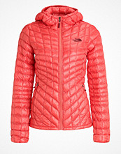 The North Face Vinterjacka spiced coral