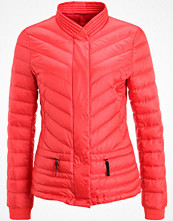 Bogner Fire + Ice CLAIRE Dunjacka red